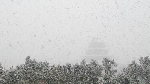 広島の冬景色 中区の風景2