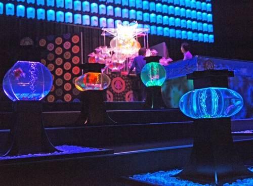 アートアクアリウム展 広島の写真8