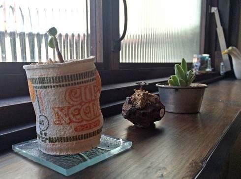 小春カフェのレトロな雑貨たち