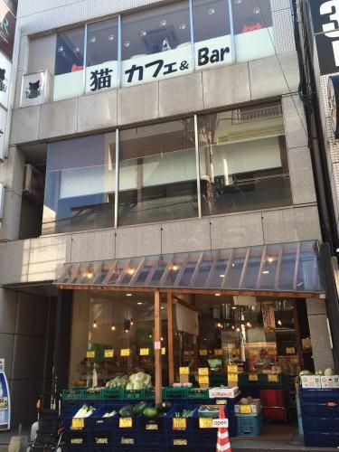 広島の猫カフェ バロン 外観
