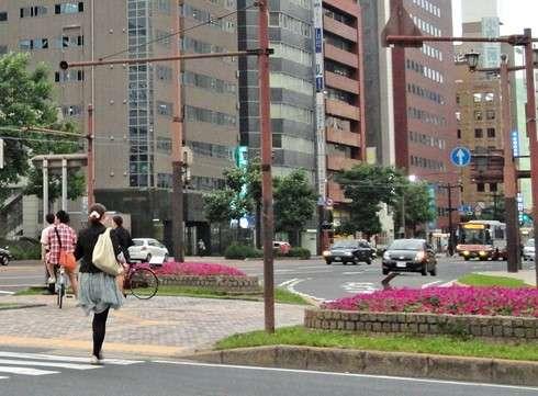 広島の街に、季節ごとに綺麗な花が植えられている