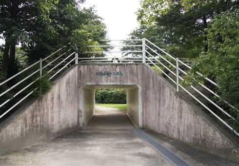 大芝公園交通ランド トンネルも