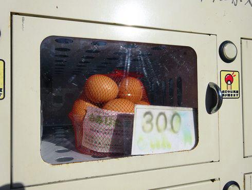 三次 卵の自動販売機 4