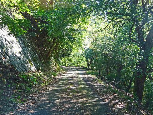 翁山公園 への山道