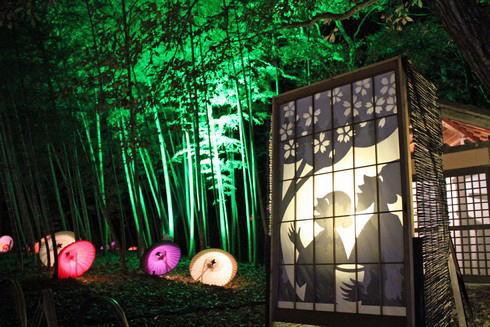 備北丘陵公園ウインターイルミネーション2015 影絵