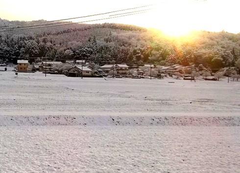 広島市で初雪観測