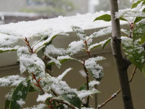 広島の冬景色 廿日市市の風景2