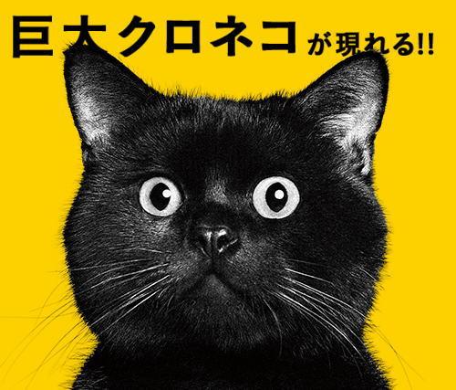 巨大クロネコが広島に出現!ヤマト運輸全国10都市行脚で