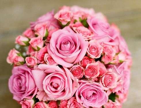 福山市がギネス記録へ挑戦、バラを贈るカップルの数で