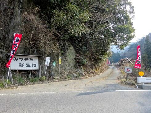 安芸高田市 ミツマタ群生地 入口