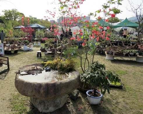広島で春のグリーンフェア、庭園のししおどし