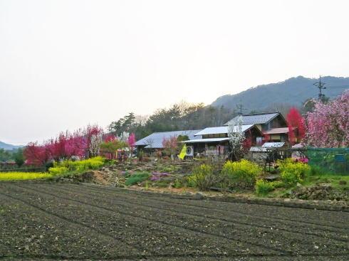 庄原市の児玉庭 全景