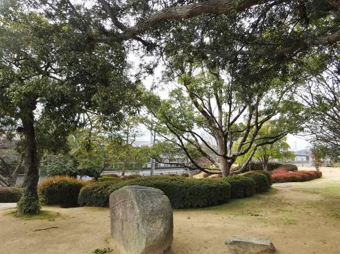 三原城跡 の上の様子