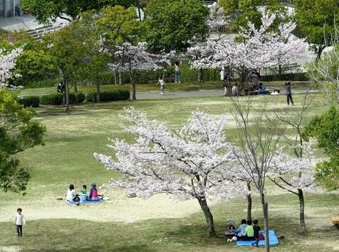 広島市森林公園 園内の様子