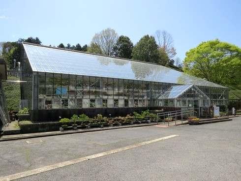 花みどり公園の温室