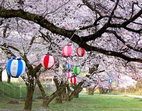 上殿さくら公園、広島・安芸太田の戸河内IC横