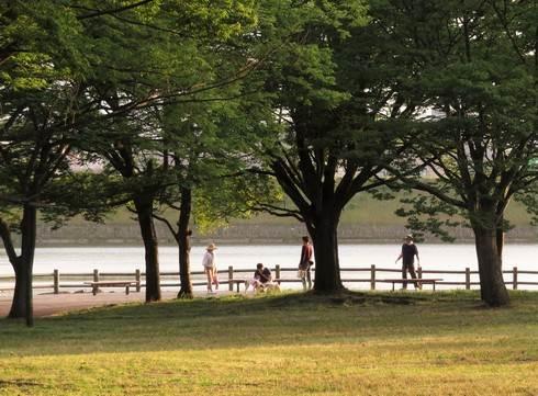 福山・春日池公園の風景