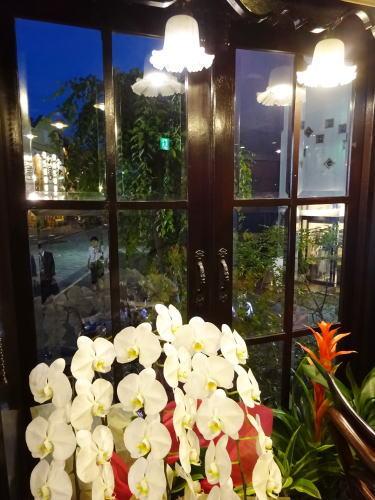 福山市 純喫茶ルナ(LUNA) 店内の様子2