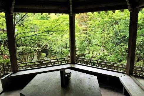 三瀧寺、広島まちなか納涼スポットでカフェ休憩も
