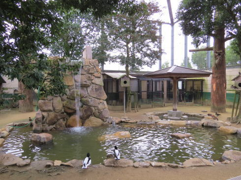 福山市立動物園 フライングゲージ