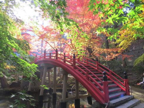 今高野山 龍華寺の秋、紅葉美しく世羅の街並み眼下に