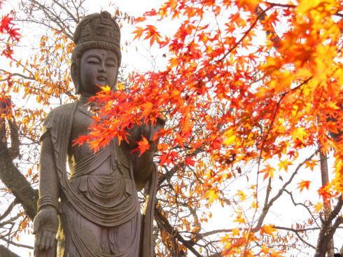 世羅 今高野山 龍華寺の紅葉 画像12