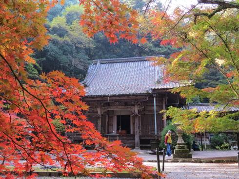 世羅 今高野山 龍華寺の紅葉 画像5