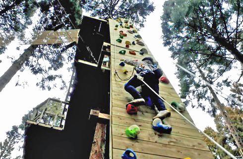 フォレストアドベンチャー広島、大人もスリル楽しむアスレチック もみのき森林公園にオープン!