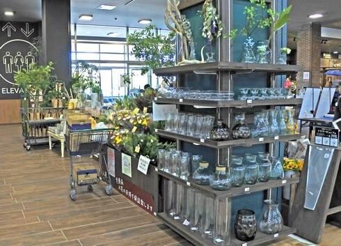 カインズ、花と緑のコーナー