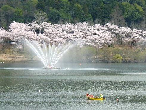 土師ダムの噴水