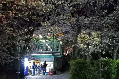 正福寺山公園の売店