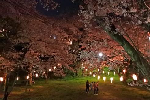 正福寺山公園、中腹にある広場