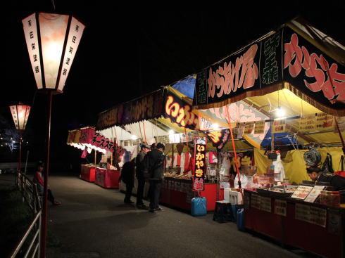 上野公園(庄原)夜桜ライトアップ 画像7