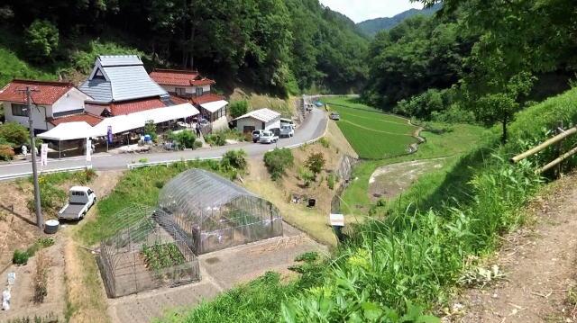 神石高原 山ゆりの里 画像15