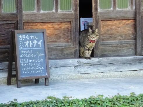 北広島カフェ オトナイ 入口ににゃんこ