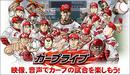 広島カープの選手たちの顔が、凄いことになっている件