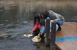 大竹市 小瀬川流域で「雛流し」女の子の幸福祈願