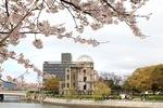 広島平和公園の 桜、元安川・本川を彩る風景