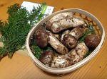 まつたけ村、広島県世羅町に全国の松茸が集結!国産の取り扱いは日本一