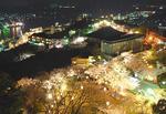 尾道・千光寺公園で夜桜ライトアップ!ボンボリ点灯は明け方まで
