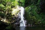 廿日市 万古渓、夏の森林浴・ハイキングに