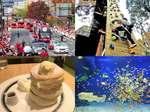 2017年 広島で最も注目されたのは?広島ニュース 食べタインジャー年間アクセスランキング