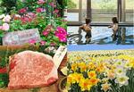 庄原の特産品が当たる!春の花楽しむ庄原 花たびキャンペーン