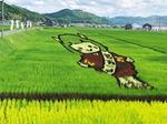 田んぼアート公園「元就新城下」、西日本最大で安芸高田に2021春開業