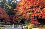 吉水園が紅葉シーズンの一般開放へ
