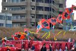 太田川河川敷で凧あげ大会!プロのながーいタコも登場