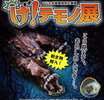 げ!テモノ展が延長、広島・マリホ水族館に「グロいけど食べたら美味しい」生物集合