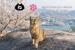 おのねこ6、尾道の猫写真展 駅前で開催