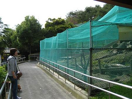 蜂ヶ峯公園 ウサギ小屋2