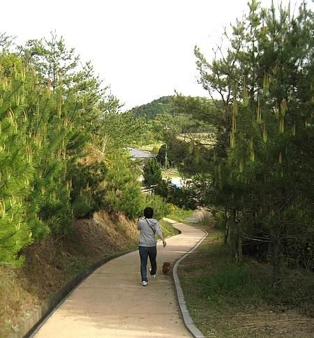 蜂ヶ峰公園 ミニSL2